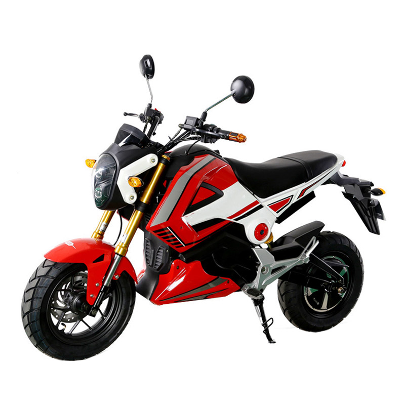 1000W electric motorbike for adults