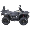 ATV Quad Off Road 4 x 4 300cc grön