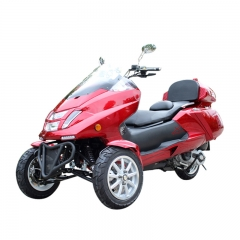 Trike Gas Scooter 300cc