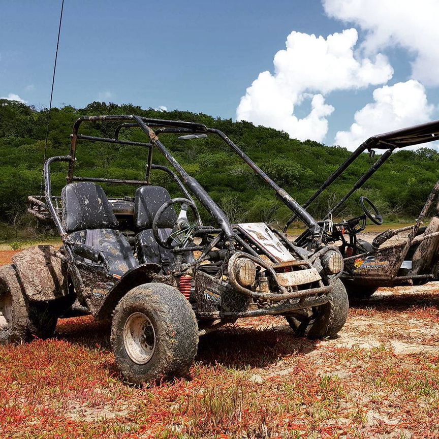Off Road Go Kart